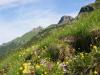 Krása doliny Zadné Meďodoly