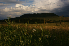 V okolí penziónu - v pozadí Vojnianska hora