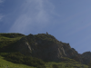 Kamzík pozorovateľ v doline Zadné Meďodoly