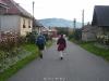 nt_top_2008_29