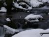 Končitá, rázcestie - zurčiaci potok